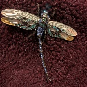 Dragon fly Pin.